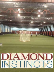 Diamond Instincts